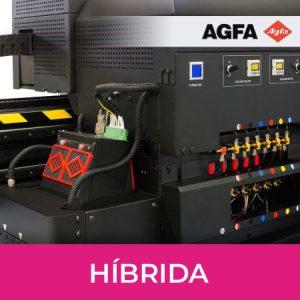 Híbrida